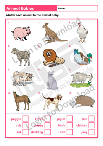 Animal Babies (Level 2)
