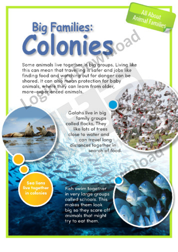 Big Families: Colonies