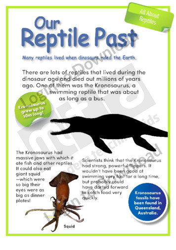 Our Reptile Past