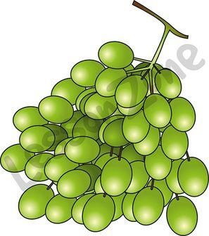 102993Z01_Grapes01
