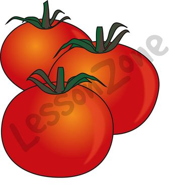 102994Z01_Tomatoes01