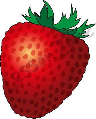 103006Z01_Strawberry01