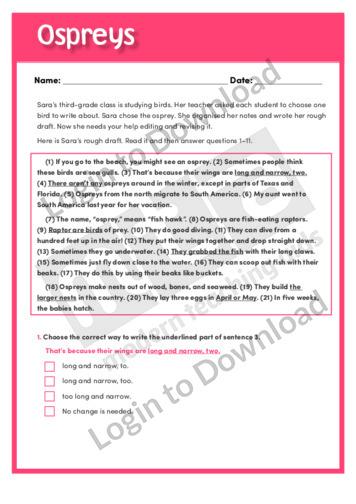 Free rewrite essay service