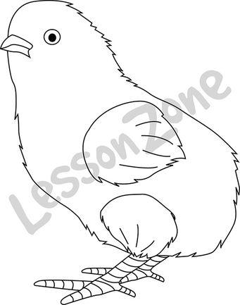 Chick B&W