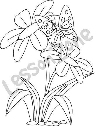 Butterfly in flowers B&W