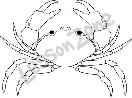Crab  B&W
