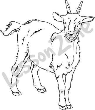 Goat  B&W