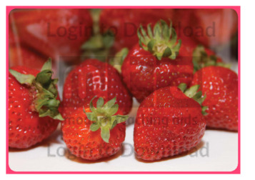 105409C02_口语图片活动草莓01