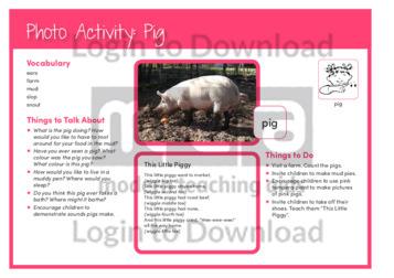 105429E02_PhotoActivity_Pig02