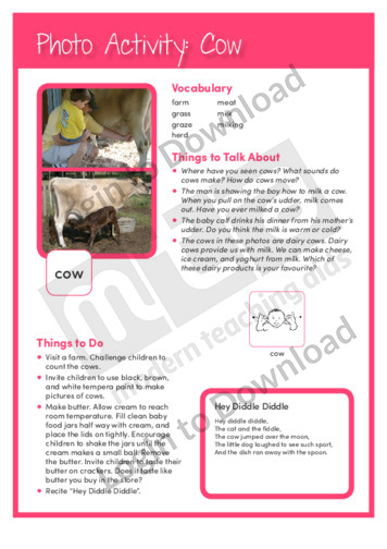 105432E02_PhotoActivity_Cow02