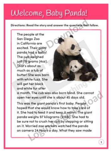 Welcome, Baby Panda!