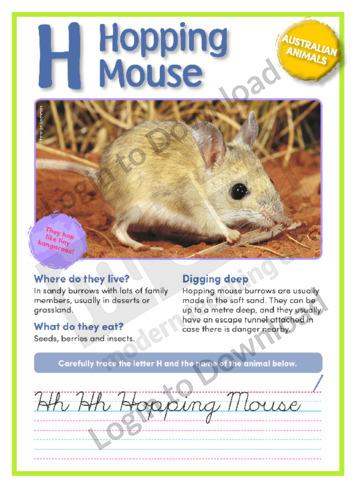 109600E02_AustralianAnimalsHoppingMouse01