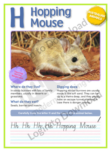109600E12_NSW_AustralianAnimalsHoppingMouse01