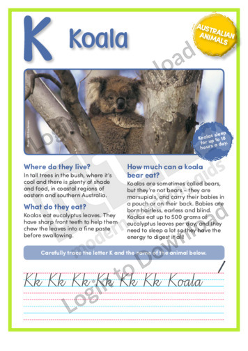 K: Koala