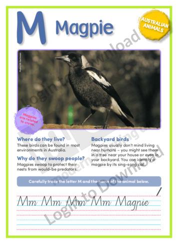 M: Magpie