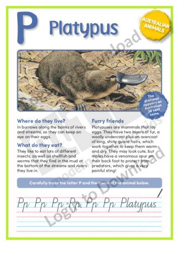 P: Platypus