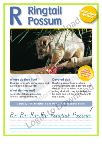 R: Ringtail Possum