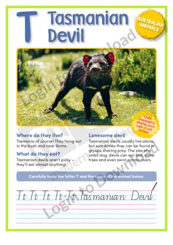 T: Tasmanian Devil