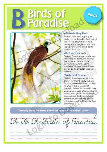 B: Birds of Paradise