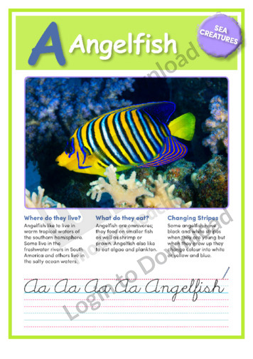 A: Angelfish