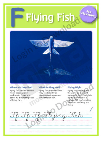 F: Flying Fish