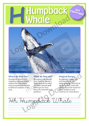H: Humpback Whale