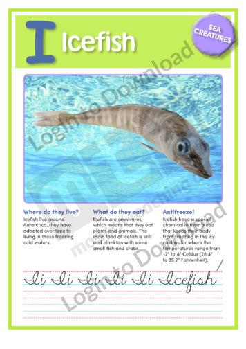 I: Icefish