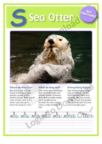 S: Sea Otter
