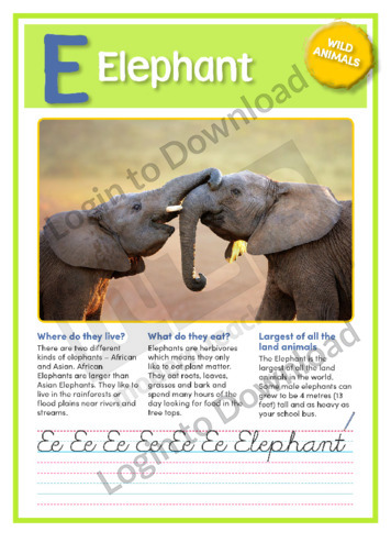 E: Elephant