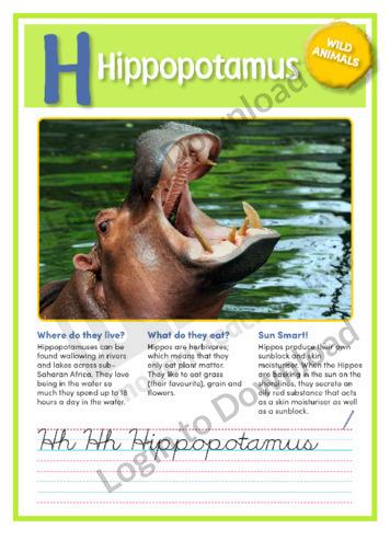 H: Hippopotamus