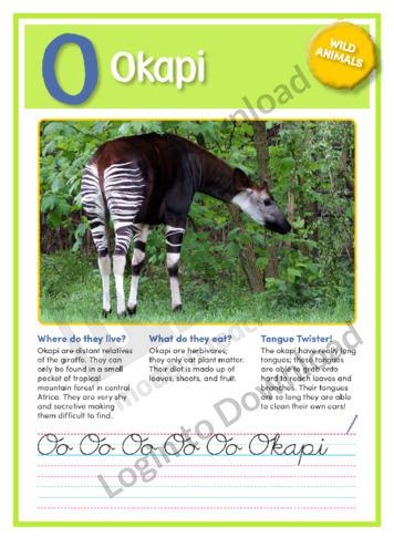 O: Okapi
