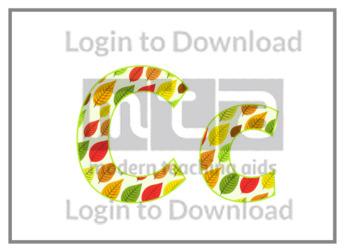 109702E01_DisplayAlphabetAutumnLeaves03