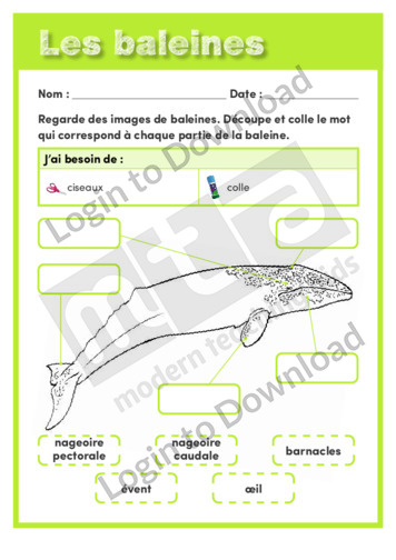110526F01_SciencesdelavieBaleines01