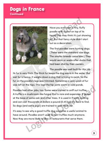 110773E02_ExploringNonfiction_DogsInFrance03