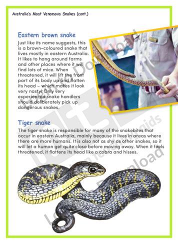 113961E02_AnimalsAustraliasMostVenomousSnakes03