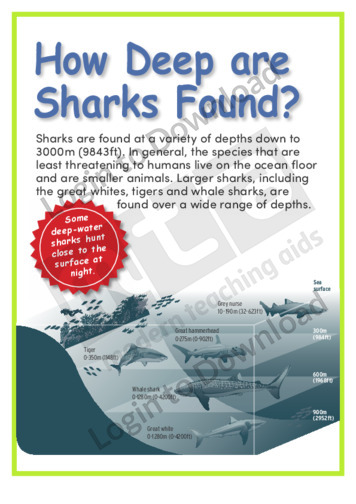 How Deep are Sharks Found?