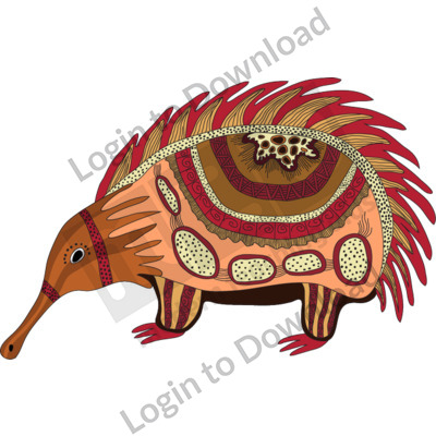 116514Z01_Clipart_AboriginalEchidna01