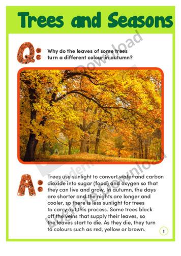 Trees and Seasons