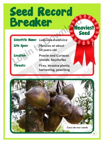 Seed Record Breaker