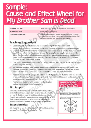 Cause and Effect Wheel for My Brother Sam Is Dead