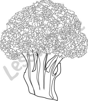 Broccoli B&W