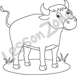 Bull  B&W