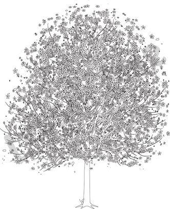 Cherry tree with blossom B&W
