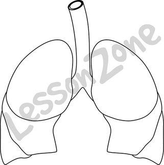 Lungs B&W