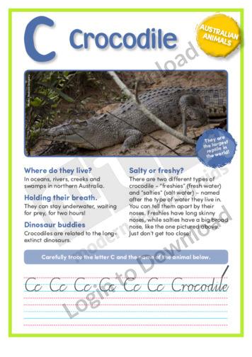 C: Crocodile