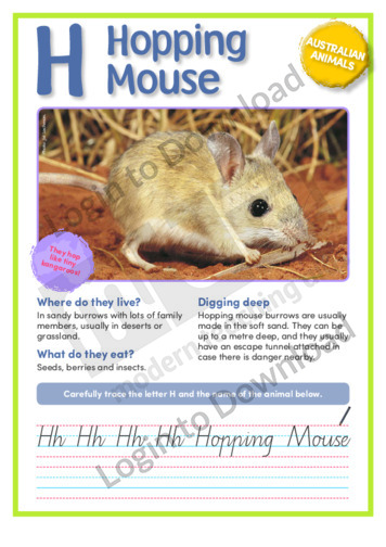H: Hopping Mouse