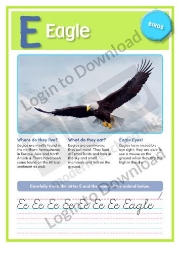 E: Eagle