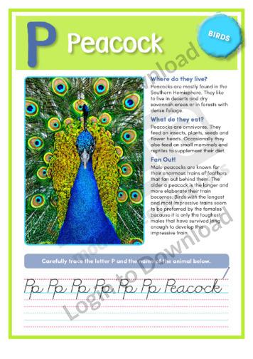 P: Peacock