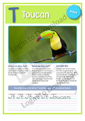T: Toucan
