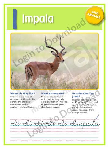 I: Impala